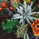 floranthropist_13