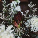floranthropist_30