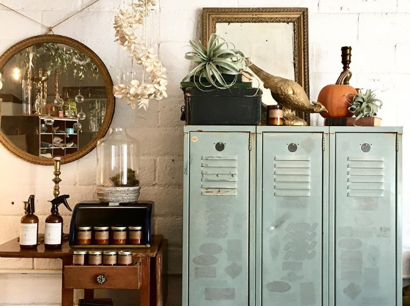 air plants, vintage goods and gifts
